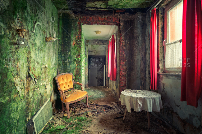 Table and chair in abandoned house with moss growing on the walls