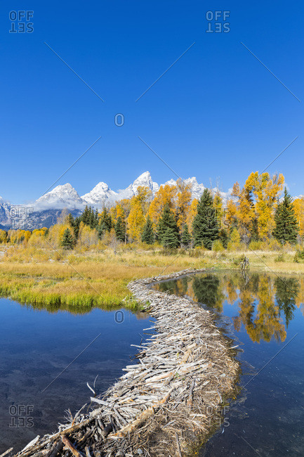 USA- Wyoming- Grand Teton National Park- Snake River with beaver dam and Teton Range in the background