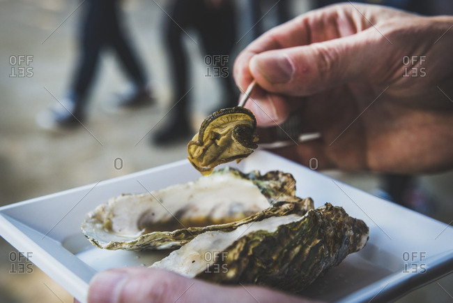 Japan- Miyajima- Man eating grilled oysters