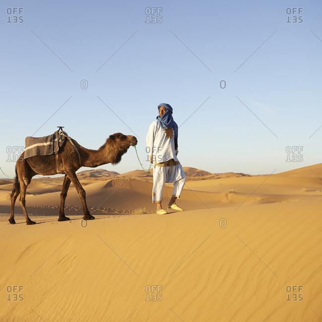 Guide leading camel on sand dune in desert landscape