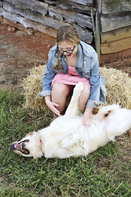 Caucasian girl scratching belly of dog on farm