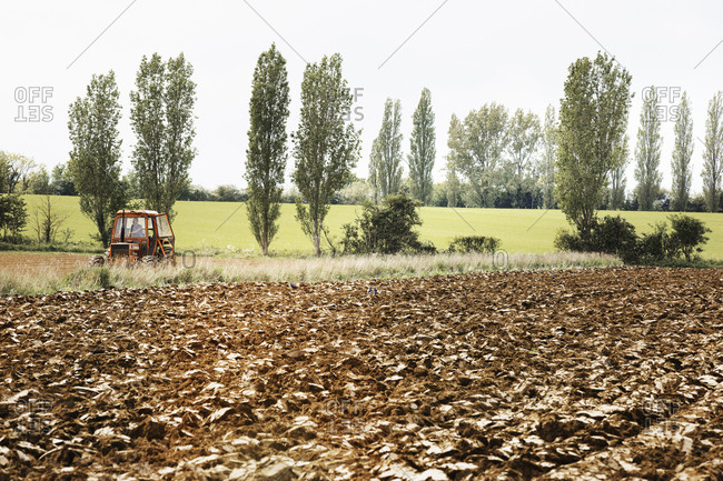 A ploughed field, and a tractor on the move. A row of poplar trees.