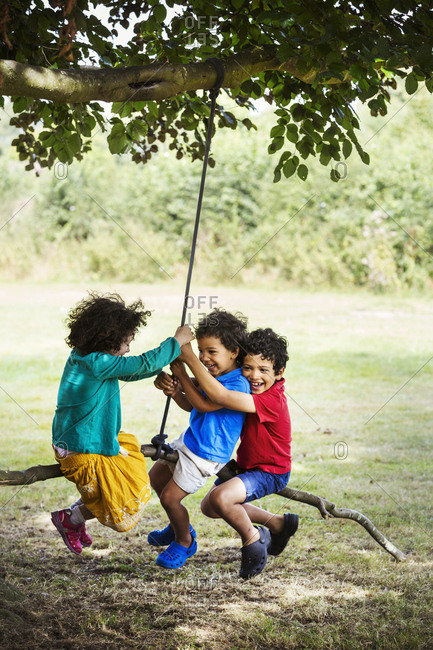Two boys and a girl sitting on a tree swing.