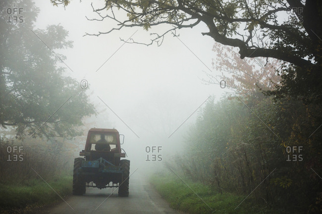 A tractor on a narrow road between hedges in the autumn mist.