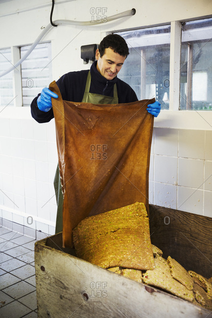 A man discarding the apple pulp after pressing.