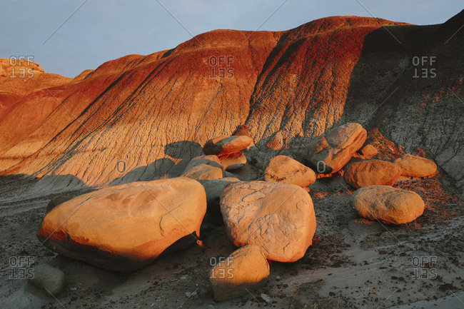 Petrified Forest at dusk
