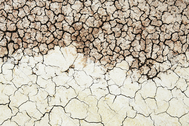 Cracked parched soil surface
