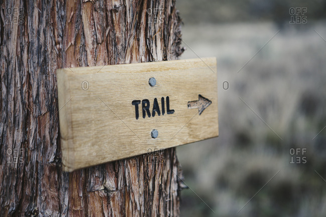 A wooden sign on a tree on the trail in the John Day Fossil Beds National Monument, Oregon