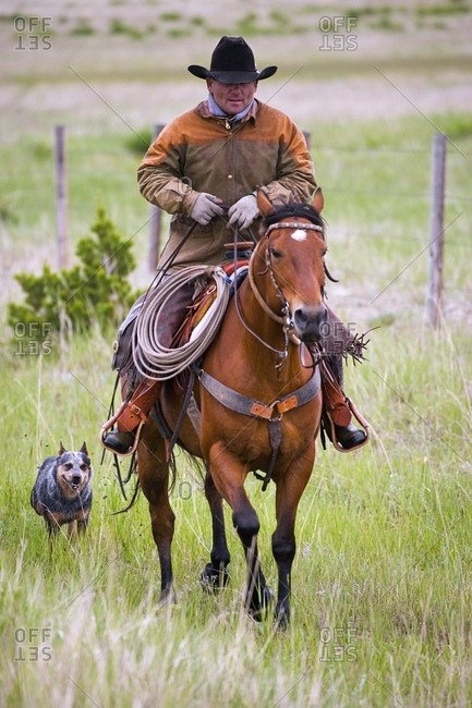 Rancher On Horseback