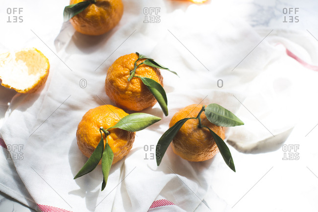 Oranges with leafy stems
