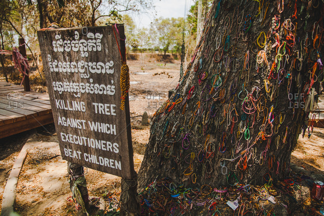 Phnom Penh, Cambodia - April 1, 2016: A tree at the Choeung Ek Genocidal Center where visitors have adorned with bracelets