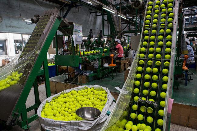 Nakhon Pathom, Thailand - August 18, 2016: Tennis balls in a factory