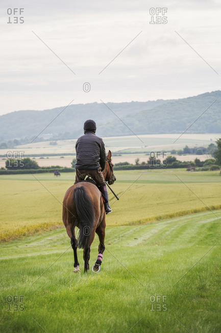 Rear view of a man riding a bay horse across a field along a grass ride in a field.