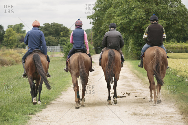 A string or group of riders on thoroughbred horses riding along a path. Racehorses in training. Routine exercise.
