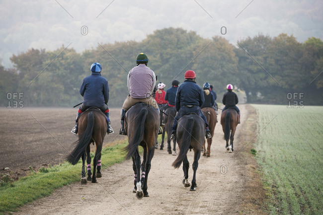 Rear view of a group of riders on thoroughbred horses riding along a path. Racehorses in training. Routine exercise.