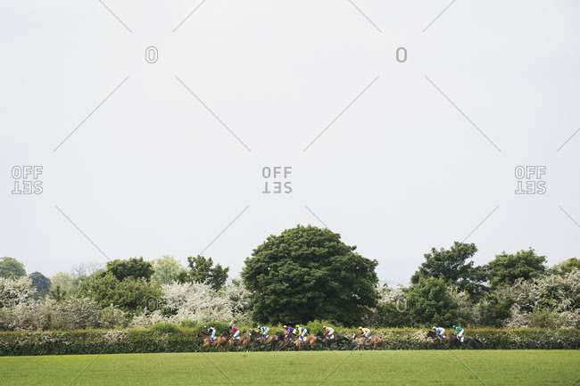 Group of riders on racehorses galloping during a steeplechase across the countryside in spring.