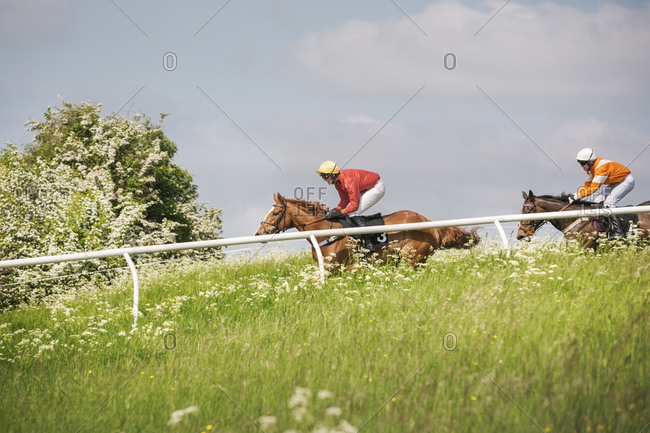 Two riders on racehorses during a steeplechase.