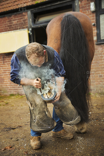 A farrier shoeing a horse, bending down and fitting a new horseshoe to a horse's hoof.  Steam from the hot metal.