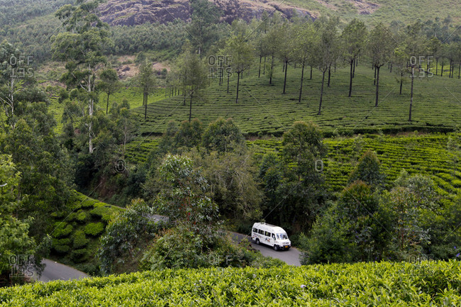 Kerala, India - December 27, 2015: A car drives through the tea plantations in Munnar.