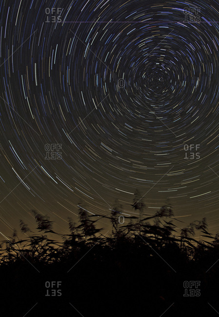 Time-exposure of star trails around the north celestial pole marked by the north star Polaris.