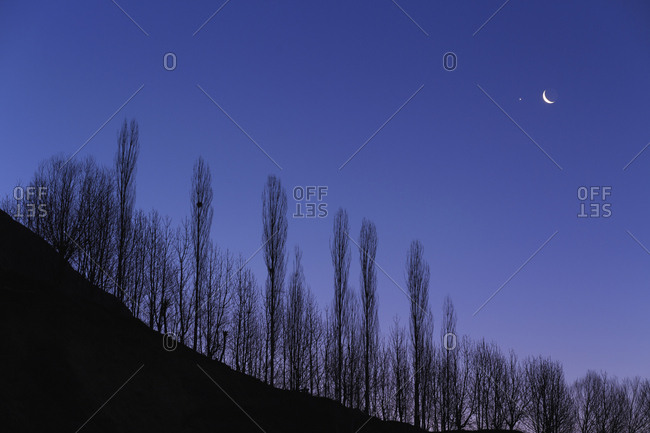 Crescent Moon and Venus in a tight conjunction above a line of trees in morning twilight.