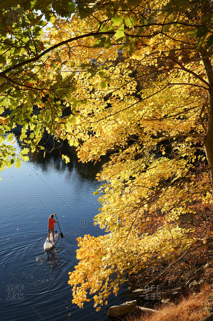 A fifteen year old paddles his SUP through brilliant Fall foliage
