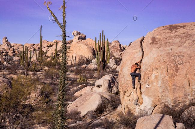 A rock climber boulders in the Baja desert.
