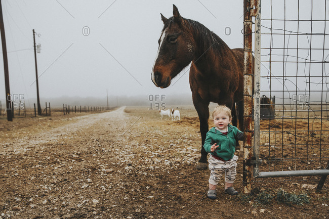 Boy standing in front of horse in morning fog