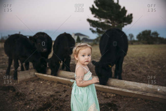 Girl in mint dress standing in front of cows