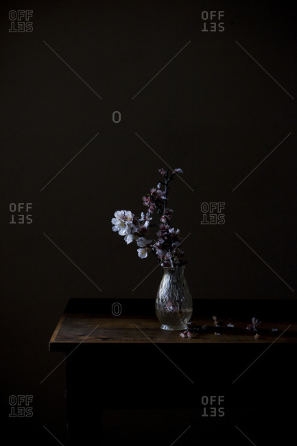 Almond blossoms in a glass vase on a wooden table on a dark background