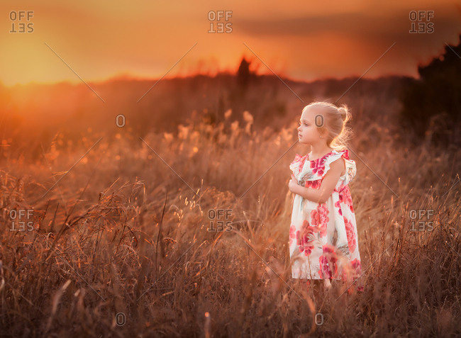Preschool girl in field at sunset