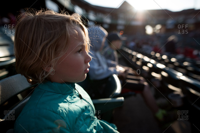 Young child watching a baseball game