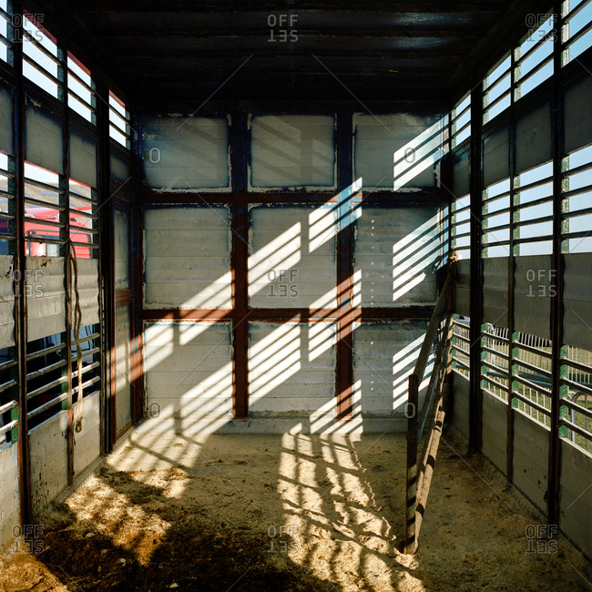 Cattle trailer with sun beams