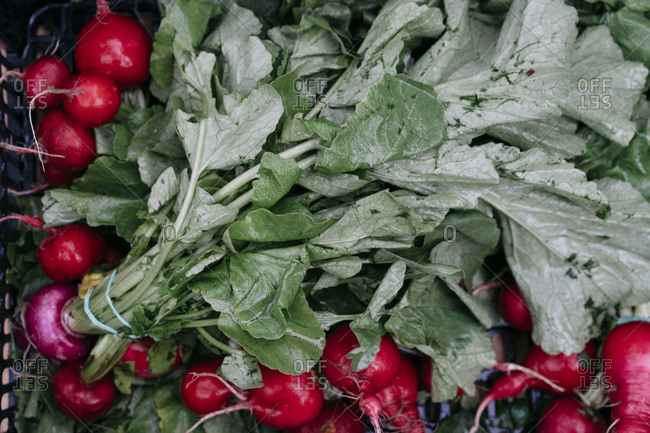 Whole radishes with leaves at a market