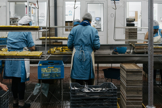 Porto, Portugal - March 3, 2017: Workers preparing cans of tuna at a processing plant