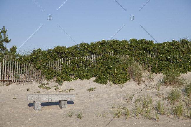 A bench in sand dunes