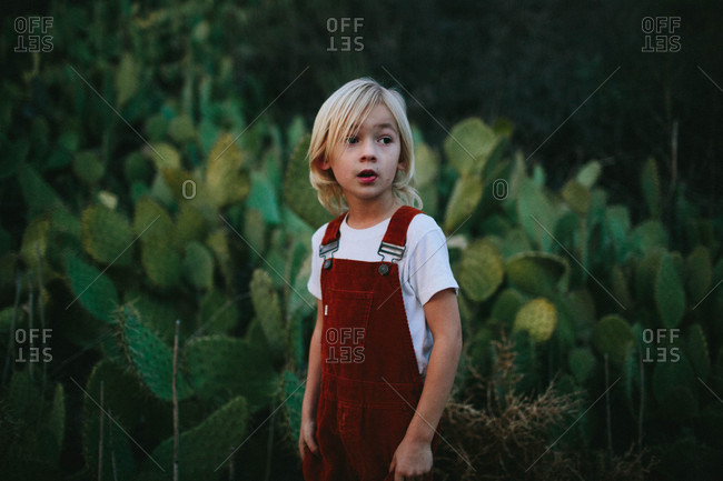 95e7a5ca Boy in overalls by cactus plants Boy in overalls by cactus plants