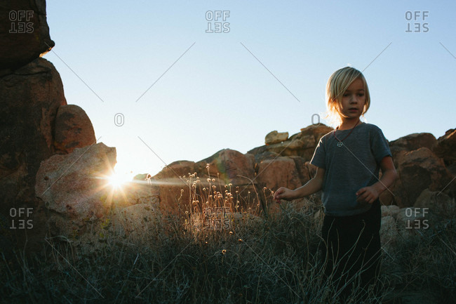 Boy standing by plants in sunlight