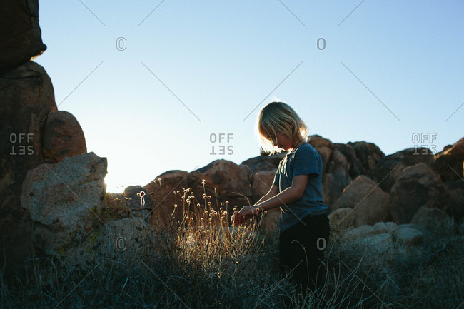 A boy looking at plants by boulders