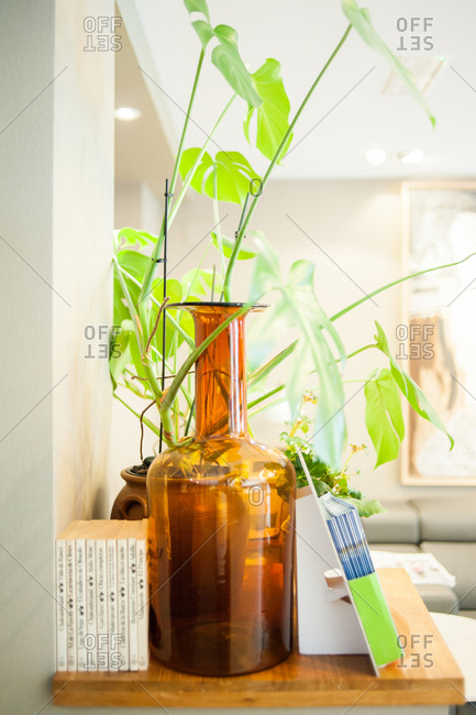 Donostia / San Sebastian, Spain - July 22, 2015: Table with plant and large brown glass jar in a hotel in Spain