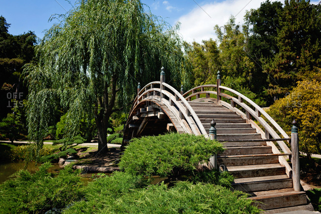 Arched wooden bridge over a pond in a garden