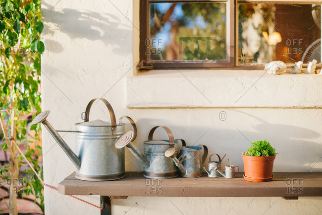 Tin watering cans on an outdoor table