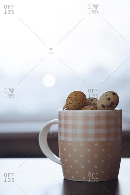 Teacup full of quail eggs