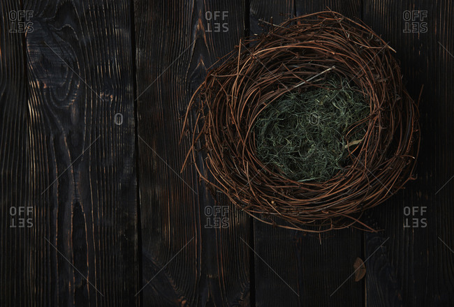 Bird nest on a rustic wooden table