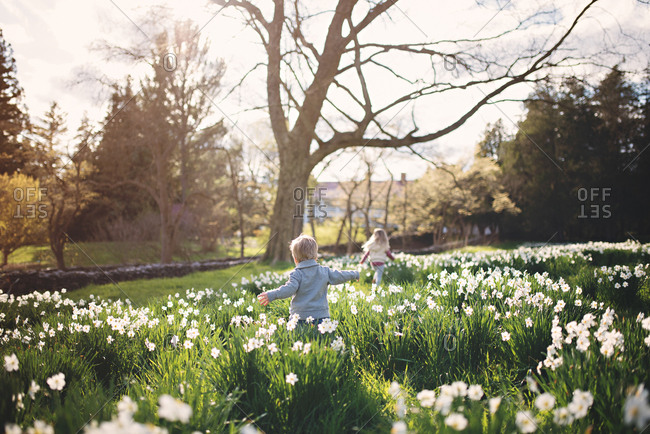 Two young children playing in field of daffodils