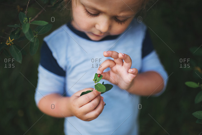 Toddler girl holding a leaf with a ladybug