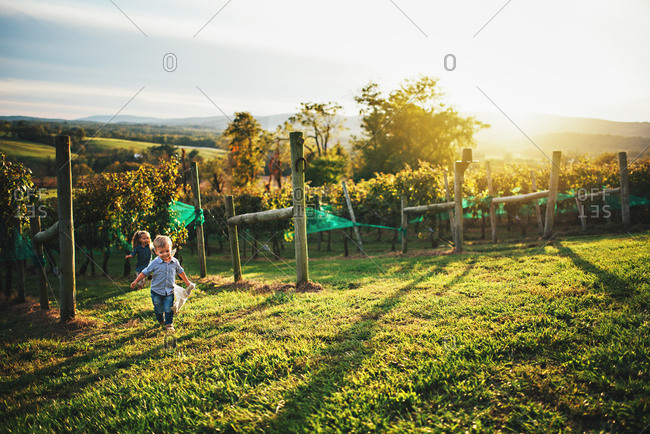 Two young children running in vineyard at dusk
