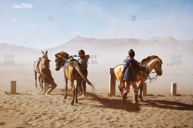 Java, Indonesia - November 9, 2013: Three men wrangling horses in the desert