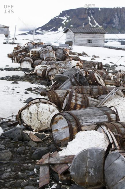 Old broken barrels on snowy ground