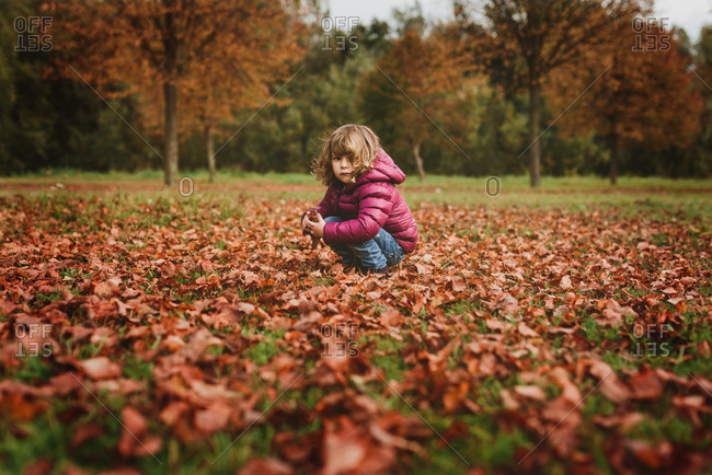 Little girl sitting in the leaves